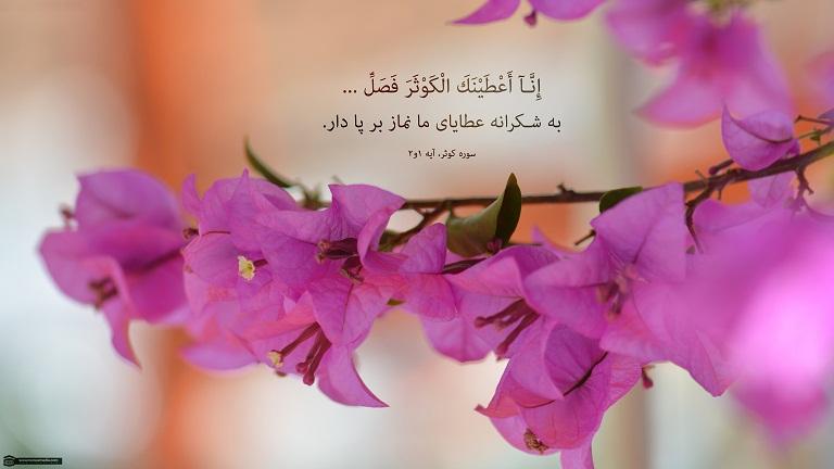 نماز تراویح چیست ؟
