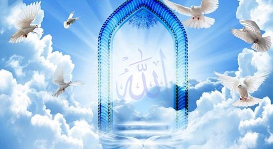 من نور نماز را دیدم!