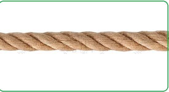 بازی تحرکی؛ پرش از روی طناب