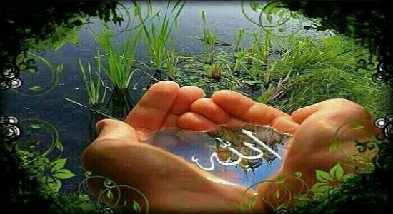 نماز عالی در پرتو درک مهربانی خدا