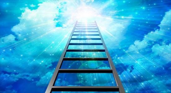 این نردبان را بگیر و حرکت کن