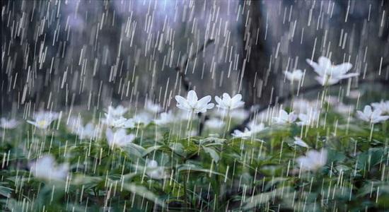 نماز باران امام حسین علیه السلام