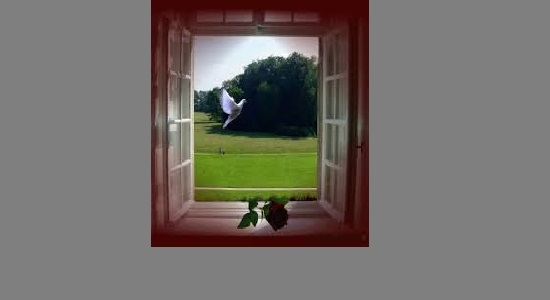 پرواز از خویش تا خدا